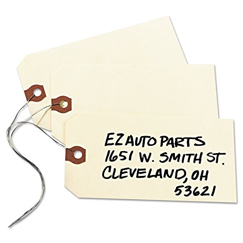 Avery Shipping Tags with Wire, 11.5 pt. Stock, 5-1/4