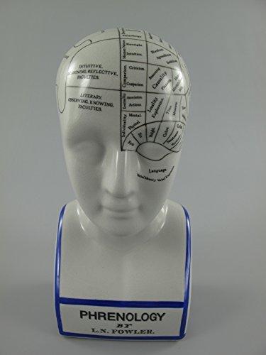 Clever-Deko frenología Cabeza phrenologische Porcelana
