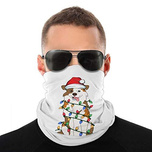 Australian Shepherd Christmas Tree Light Neck Gaiter Face Mask Washable Reusable Bandanas for Men Women Summer