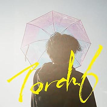 Torch.6