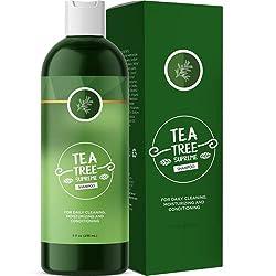 Sulfate Free Tea Tree Shampoo Dandruff Treatment