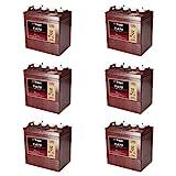 Trojan T875 8 Volt, 170 AH Deep Cycle Battery - 6 Pack