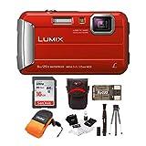Panasonic LUMIX DMC-TS30 Digital Camera (Red) with 16GB Card and Accessory...