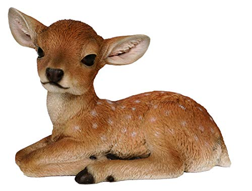 M.E.G Cards & Gifts Vivid Arts - Real Life Fallow Deer Home or Garden...