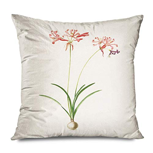 Florals Throw Pillows Cushion Cover for Bedroom Sofa Living Room Spring Flower Language North Europe Small Fresh Modern Minimalist Rural Floral Green Slender Leaf Pillowcase 18X18 Inch