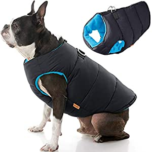 Gooby Padded Dog Vest – Zip Up Dog Jacket Coat with D Ring Leash – Small Dog Sweater with Zipper Closure – Dog Clothes for Small Dogs Girl or Boy for Indoor and Outdoor Use