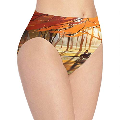 XCNGG Bragas Ropa Interior de Mujer 3D Print Soft Women's Underwear, Autumn Motorcycle Leaves and Sunset Fashion Flirty Lady'S Panties Briefs Small