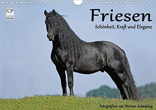 Friesen - Schönheit, Kraft und Eleganz (Wandkalender 2020 DIN A4 quer): Friesenpferde - die edle Pferderasse (Monatskalender, 14 Seiten )