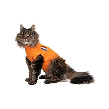 Medical Pet Shirt Gilet Orange Chat XS