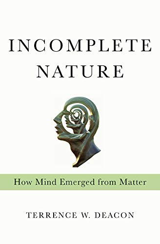 Image of Incomplete Nature: How Mind Emerged from Matter