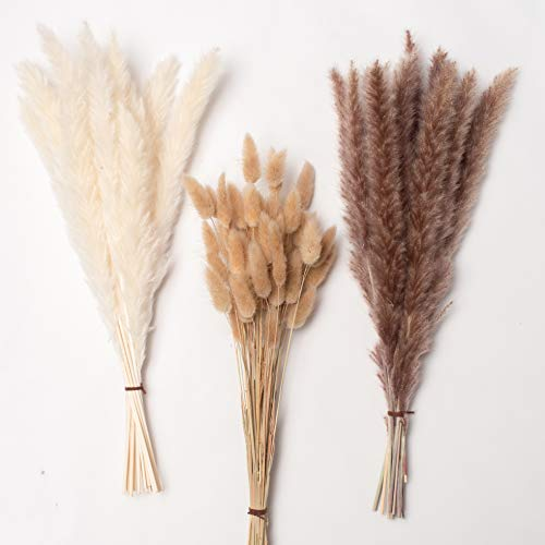 "Total 80 Pcs, 17"" Set | 30 Pcs White Pampas and Natural Dried Pampas Grass,50 Pcs Natural Rabbit Tail Grass, Lagurus Ovatus Perfect for Home Decor, Boho Decor and Wedding Flower Arrangements"
