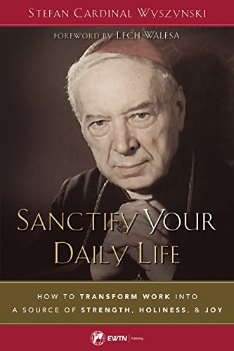 Sanctify Your Daily Life: How to Transform Work Into a Source of Strength, Holiness, and Joy