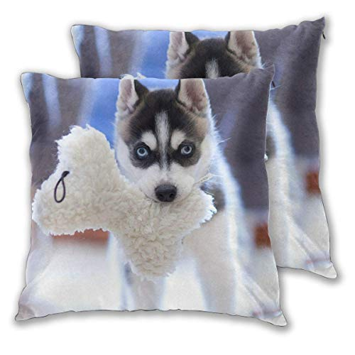 JONINOT 2 PCS 16'x16' Throw Pillow Cushion Case,Inserts are Not Included