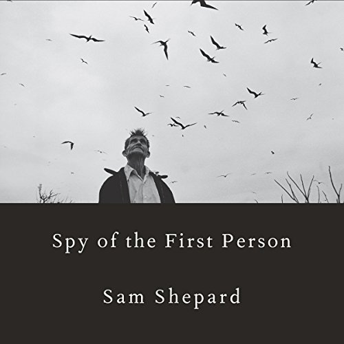 Spy of the First Person audiobook cover art
