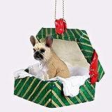 Conversation Concepts French Bulldog Fawn Gift Box Green Ornament