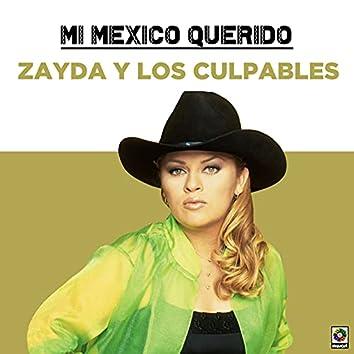 Mi Mexico Querido