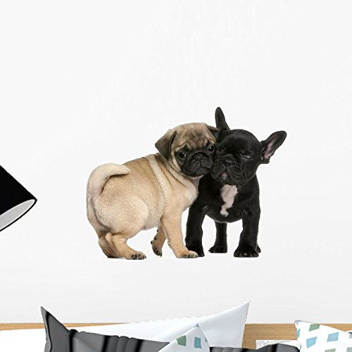 Wallmonkeys Pug Puppy and French Bulldog Puppy Wall Decal Peel and Stick Graphic WM114068 (18 in W x 13 in H)