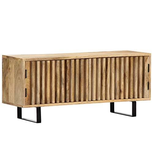 vidaXL Mangoholz Massiv TV Schrank mit 2 Türen TV Board Möbel Lowboard Fernsehschrank Fernsehtisch Sideboard HiFi Fernseher Schrank 90x30x40cm Eisen