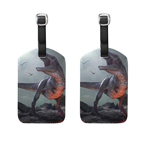 Chic Houses Dinosaurio extremo monstruo de cuero etiquetas de equipaje misteriosa personalidad maleta equipaje etiqueta de viaje identificación bolsa etiqueta para maleta 2031564
