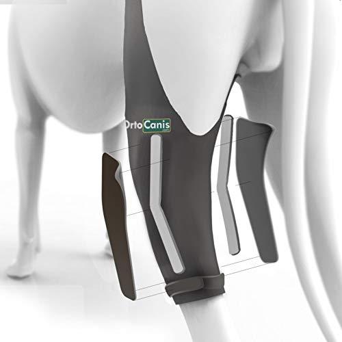 Ortocanis Knie-Wegfahrsperre für Hunde mit Kreuzband- und Patella-Verrenkung, hält das Gelenk stabil und reduziert Bewegungen, 8 Größen für das linke oder rechte Bein, Farbe: Schwarz