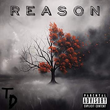 Reason: Better Than Before