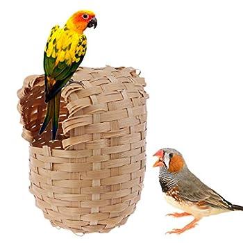 Pommee Nid Rotin pour Oiseaux Exotiques