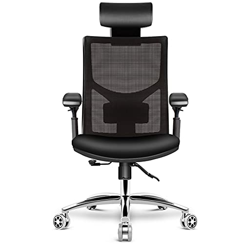 HomeGoGo Office Desk Chairs, Ergonomic Mesh Home Computer Chair, Adjustable Executive Chair with Headrest, Armrest and Rolling Swivel for Men and Women,330 lbs Load Bearing, LJ-301A