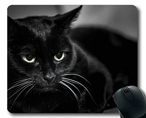 Mauspad, Katzenmauspad, Mauspad für Computer cat348
