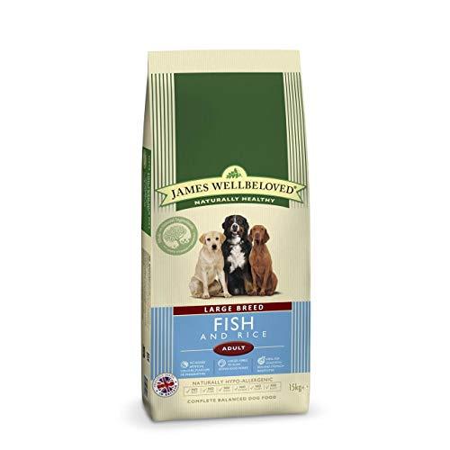 James Wellbeloved Croquettes pour chien adulte Large Breed Poisson et riz 15 kg
