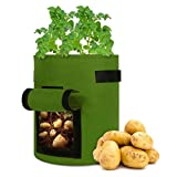 kincam sacchi per piante,5 sacchi 27l/7gallon grow borse con panno in feltro,con finestra,velcro e comoda maniglia,adatto per piantine di ortaggi/patate/carote,verde