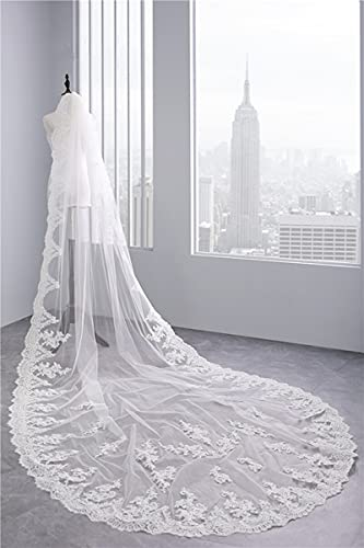 HUIJK Veil One Layer Cathedral Length Bridal Veils Applique Lace Edge Wedding Veils with Comb Bridal Accessories (Color : Ivory, Item Length : 300cm)