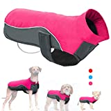 Didog Reflective Dog Winter Coat Sport Vest Jackets Snowsuit Apparel - 8 for Small Medium Large Dogs (Chest:27-31.5',Back Length:28', Hot Pink)