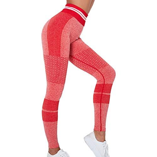 lkjhgfd Chándal de Damas/Patas de Cintura Alta/Tops de Cultivos, Entrenamiento de Yoga Fitness Jogging Gimnasio Ropa Deportiva (Venta por Separado) Red Pants-M