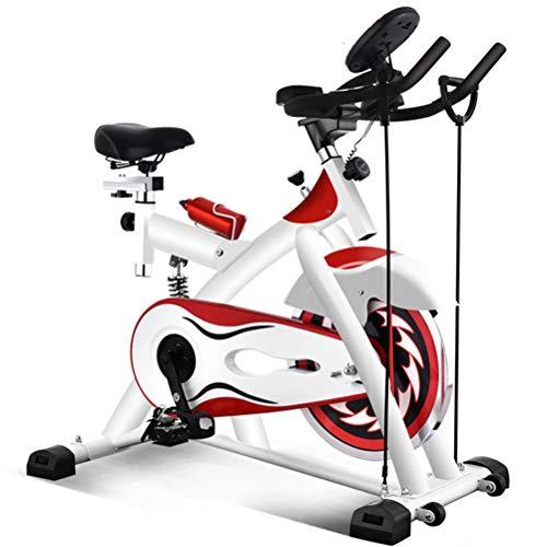 ZHJIUXING HO Heimtrainer Fahrrad - Fahrradergometer mit Pulssensoren Trainingscomputer, Magnetbremse, Schwungmasse 10 kg - Ergometer für EIN max. Nutzergewicht von 180kg, B