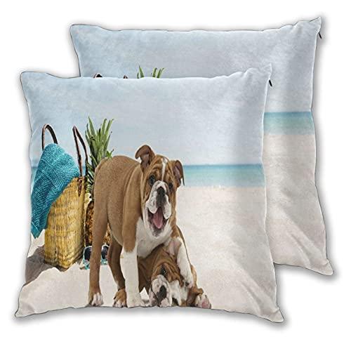 GUVICINIR Juego de 2 Fundas de cojín,Playa Funny Time Bulldog Francés,Decorativa Cuadrado Suave Funda de Almohada Sofá Sillas Cama Decoración para Hogar,45x45cm