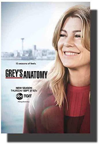Refosian Grey's Anatomy Staffel 14 TV-Serie Kunstplakat Druck Leinwandbilder Wohnzimmer Kunstwerk Raumbilder Wohnkultur-50x75cm Kein Rahmen