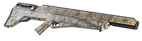 Benjamin Bulldog Air Rifle