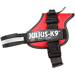 Julius-K9 162R1 K9 PowerHarness for Dogs, Size 1, Red:Kumagai-yutaka