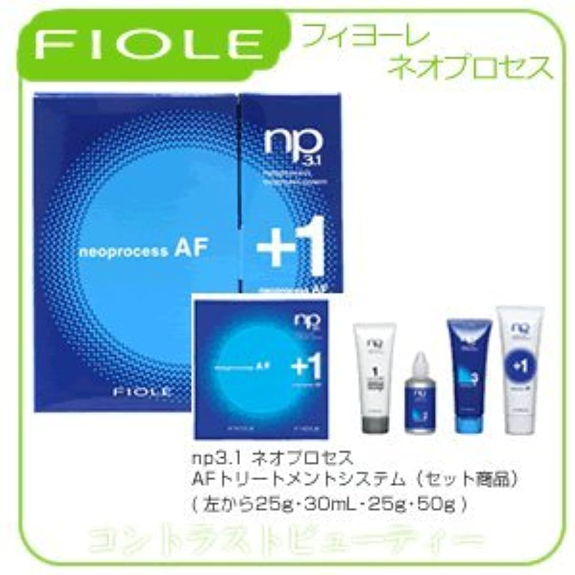 拮抗未払い遡るフィヨーレ NP3.1 ネオプロセス AF トリートメントシステム FIOLE ネオプロセス