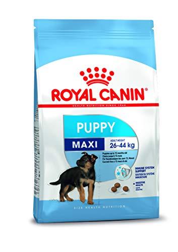Royal Canin Alimento para Perros Maxi Puppy- 15 kg