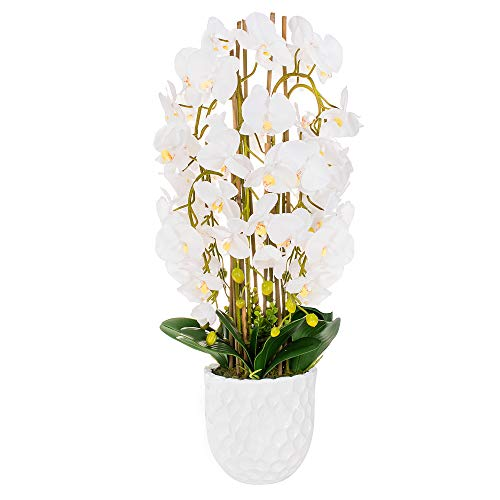 SPRINGOS Orchidea Artificiale con Fiori e Vaso in Ceramica Fiore Artificiale Fiore...