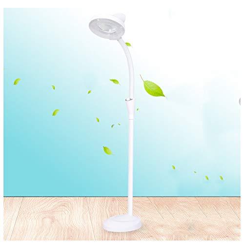 LED Vergrootlamp, Vloer Staande Vergrootglas Lamp Schoonheid Lamp 8X Vergrootoogbescherming Licht Vloerlamp Professionele Geen Schaduw Tattoo Nagel Kunst