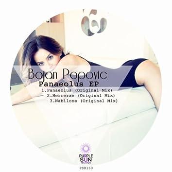 Panaeolus EP