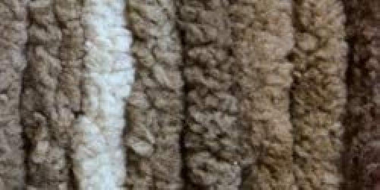 Bulk Buy: Bernat Blanket Big Ball Yarn (2-Pack) Sonoma 161110-10018