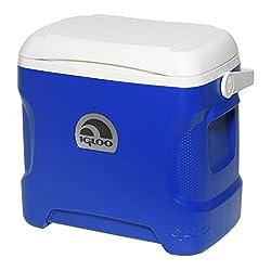 top rated Igloo 30 Quart Contour Cooler 2021