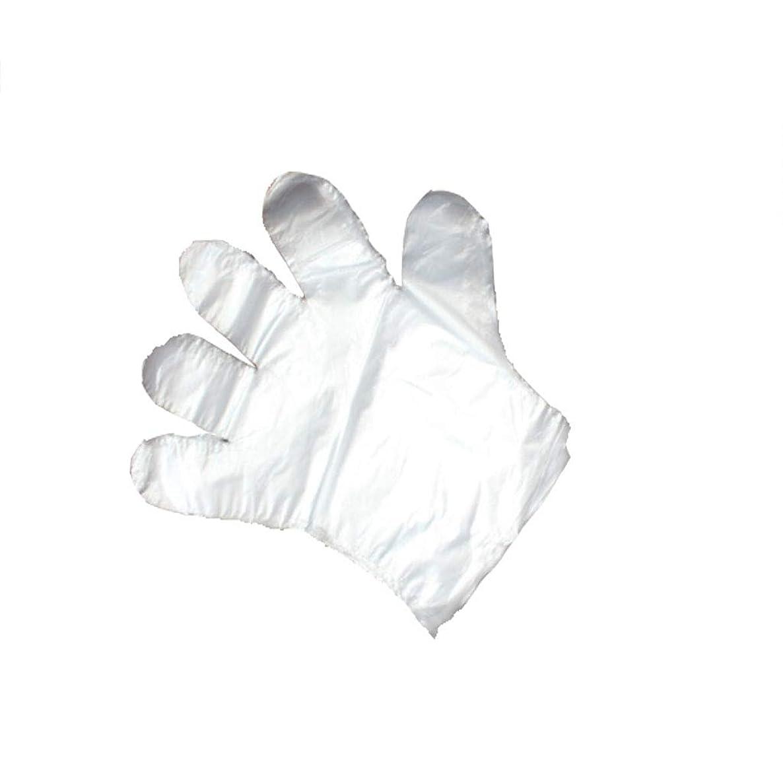 ホールド無駄に船上手袋、使い捨て手袋、透明な肥厚、美しさ、家庭掃除、手袋、白、透明、5パック、500袋。 (UnitCount : 500)