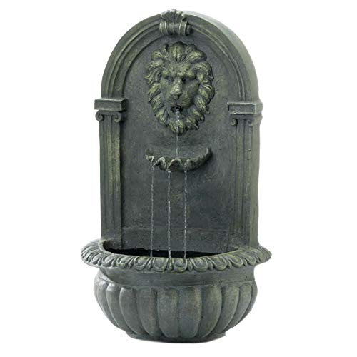 AK Energy Lion Face Roman Wall Mount Hanging Garden Water Fountain Indoor Outdoor Mossy Green with Pump