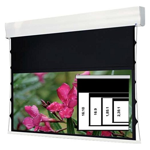 WS Spalluto WS-S-4 Format-Wave 100 Zoll 4:3 203x152cm HomeVisi