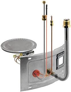 Rheem AM40277-1 Water Heater Burner Assembly