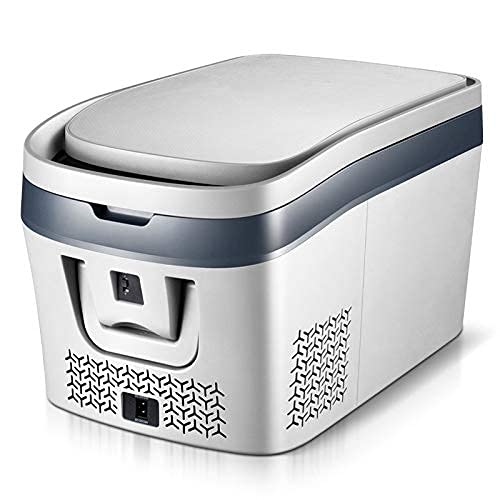 RTOFO Mini refrigerador de 38 L de coche DC 12 V 24 V refrigerador de coche congelador refrigerador para coche, hogar, picnic, refrigeración, congelador -19 ~ 10 grados